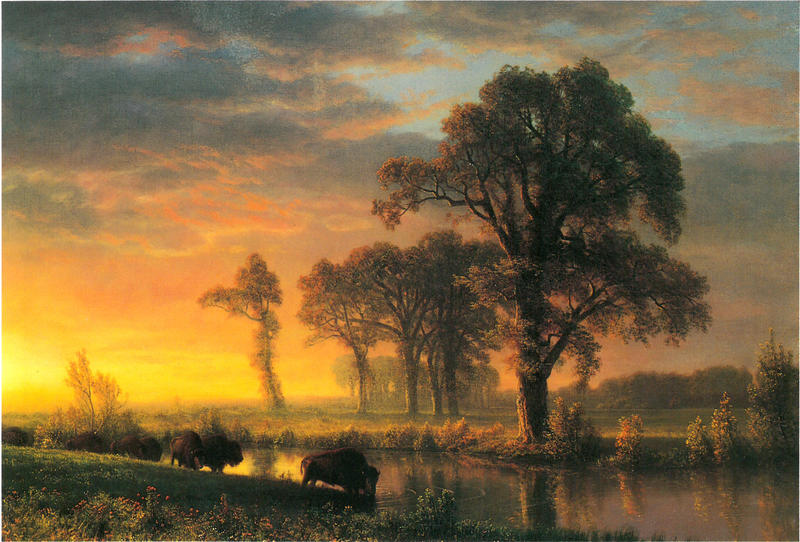 Albert Bierstadt (American, born Germany, 1830-1902). Western Kansas, 1875. Oil on canvas, 28 x 39.5 inches. Private collection.