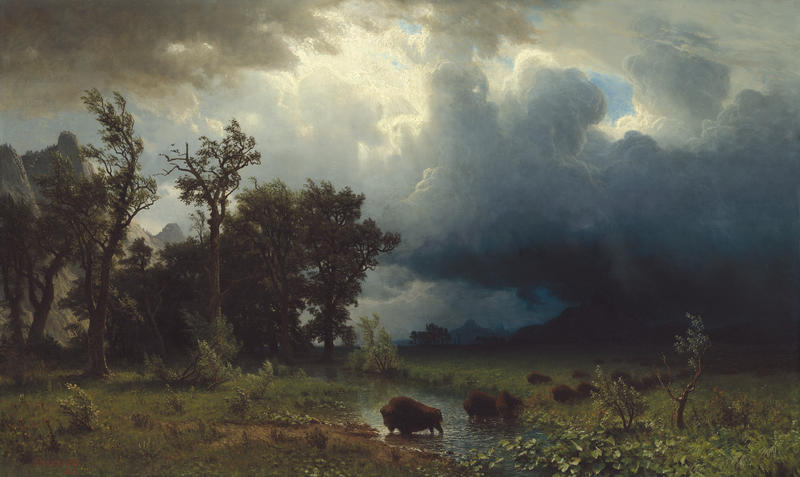 Albert Bierstadt (American, born Germany, 1830-1902). Buffalo Trail: The Impending Storm, 1869. Oil on canvas, 29 x 49 inches. Corcoran Collection, National Gallery of Art, Washington, D.C., 2014.79.3