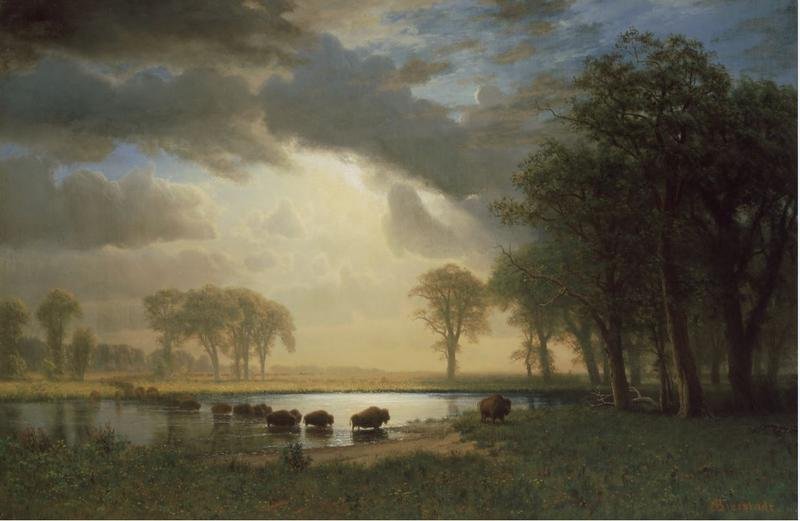 Albert Bierstadt (American, born Germany, 1830-1902). The Buffalo Trail, 1867. Oil on canvas, 31.875 x 48 inches. Museum of Fine Arts, Boston, MA. Gift of Martha C. Karolik for the M. and M. Karolik Collection of American Paintings, 1815-1865. 47.1268