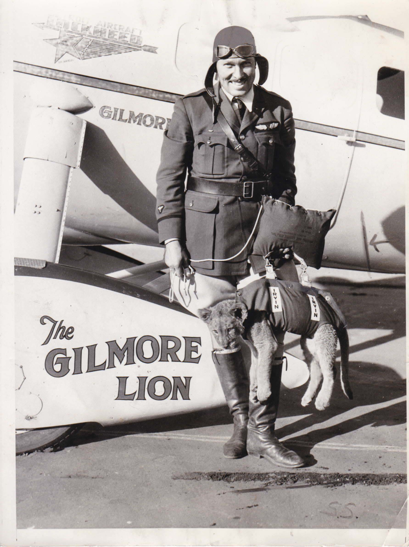Roscoe Turner holding Gilmore the lion as a cub around 1929 or 1930. Box 113, Roscoe Turner papers.