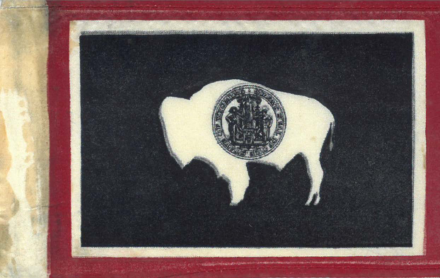 Small silk flag sold by members of the Daughters of the American Revolution during the February 16, 1919 Wyoming House of Representatives session where Governor Robert D. Carey was officially presented with the Wyoming state flag. Box 1, Verna Keyes paper