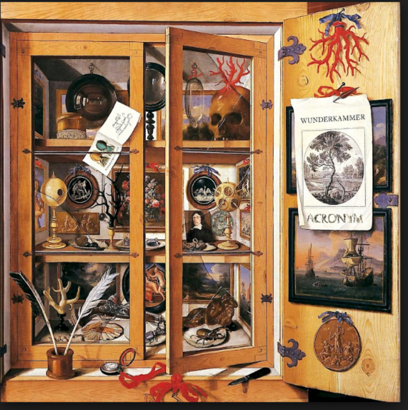 """Image of illustrated Wunderkammer (not in Wyoming) from the home of a music collecting aristocrat. Undated. """"ACRONYM: Wunderkammer"""" New Focus Recordings.com, Accessed April, 2018."""