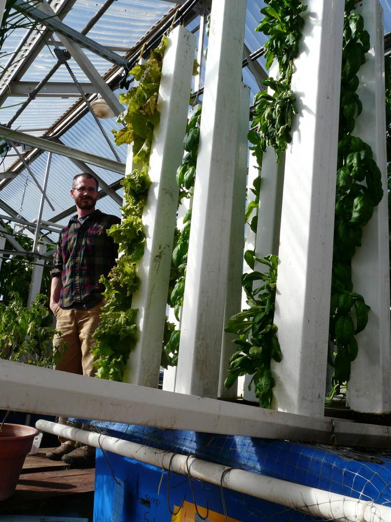 Nate Storey tends a tower of lettuce in his greenhouse in Laramie