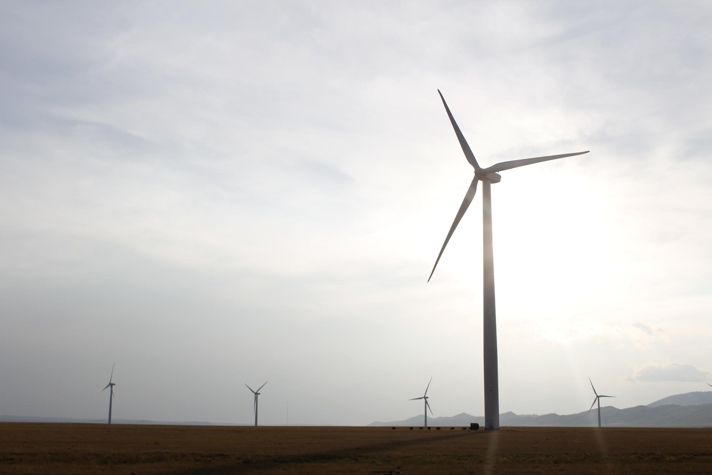 Laramie To Host Major Wind Energy Conference