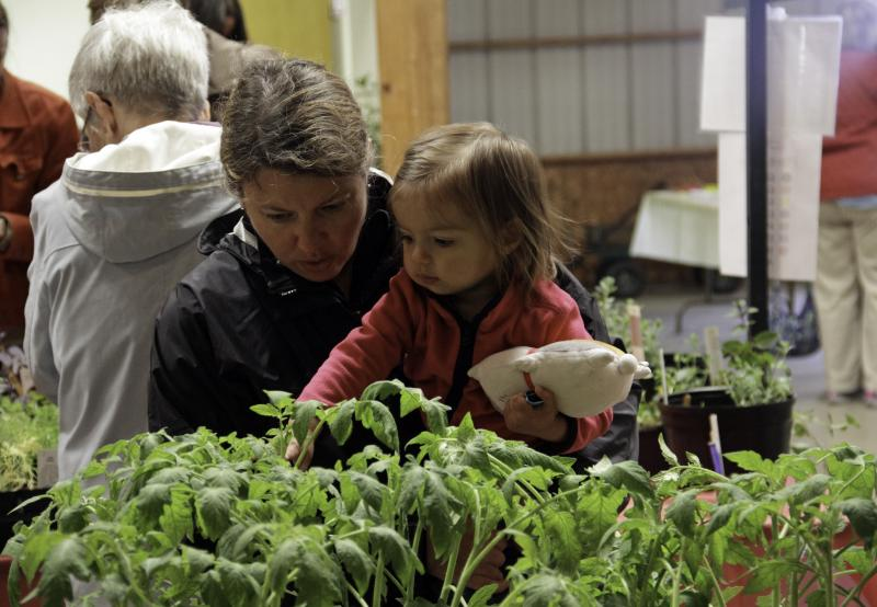 Woman with baby looking at tomato plants