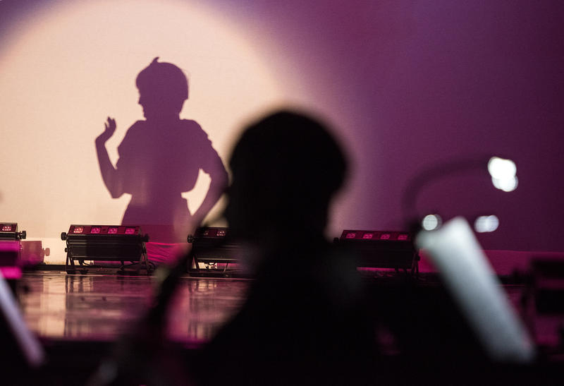 "A silhouette of Cat Rokavec as Sally Bowles in ""Cabaret."""