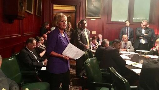 Senator Lisa Boscola asks for support for her redistricting bill before the chamber's Appropriations Committee.