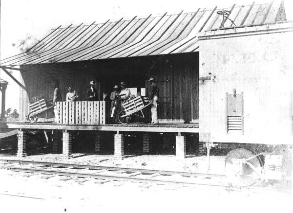 Undated photo shows pineapple packing house near Fort Pierce with FEC rail siding in front.