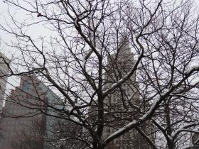 Snow in downtown Providence