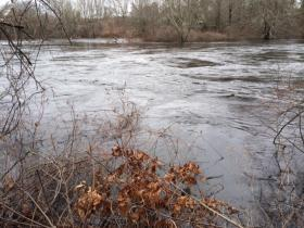A rain swollen Pawcatuck River in Westerly RI.
