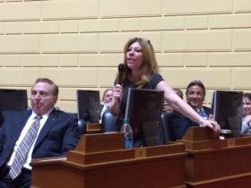 "Rep Doreen Costa (R-North Kingstown) rebutted one colleague's concern by saying grandparents are ""smart cookies"" who can understand voting without the master lever."