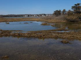 The Town of Westerly has secured more than $1 million in grants to dredge Winnepaug Pond in Misquamicut. Superstorm Sandy dumped about 60,000 to 70,000 cubic yards of sand, making it more shallow and warm.