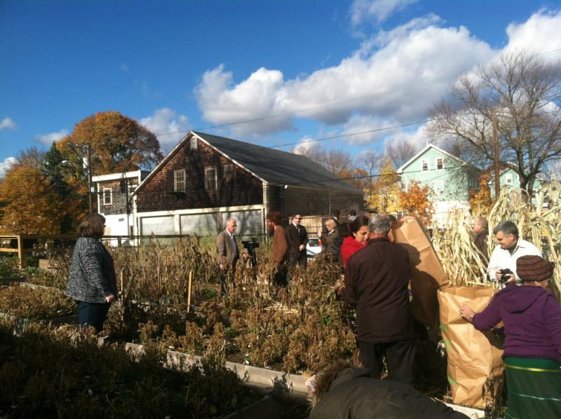 Brattle Community Garden