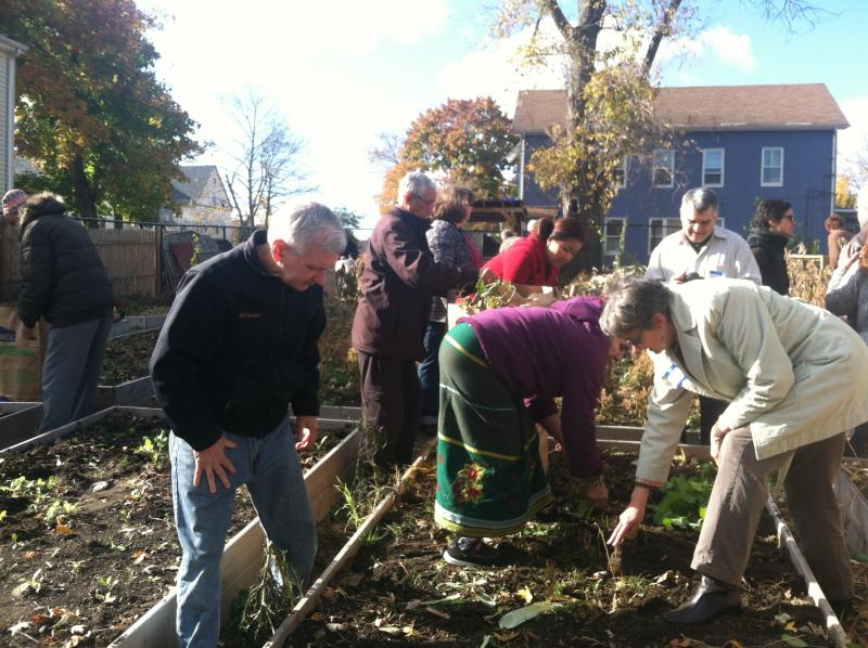 Senator Reed and community members prepare the garden for winter.