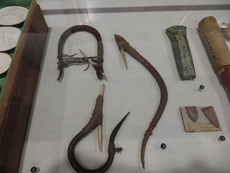 Native American fish hooks from the Pacific Northwest.