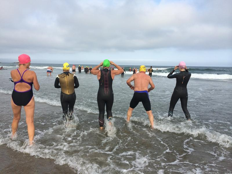 Swimmers enter the water for the one-mile-plus swim.