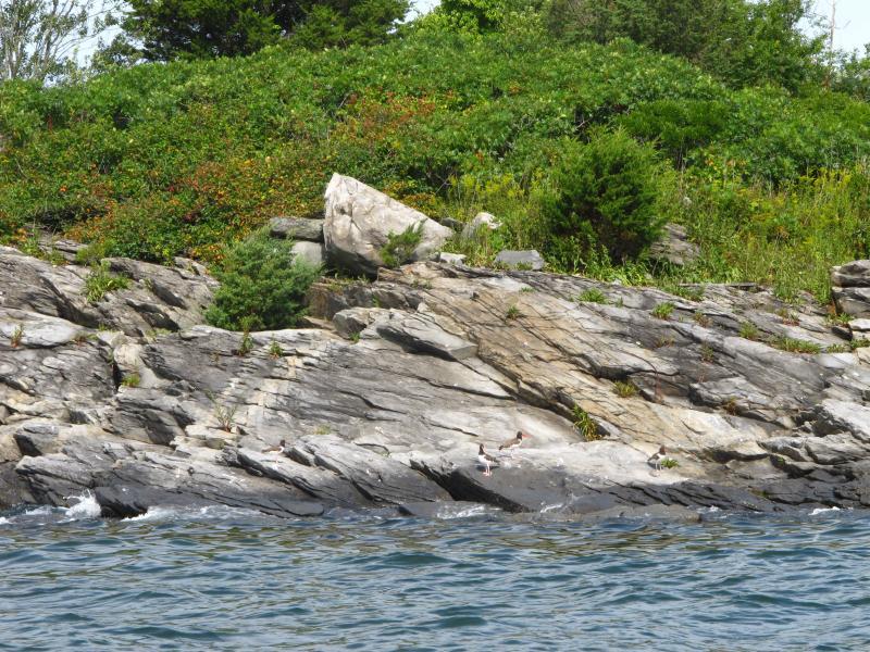 Narragansett Bay Rhode Island Many Islands in Narragansett Bay Such as Hope And Dyer Islands