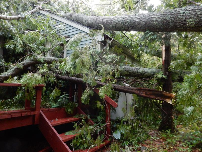 Last August, a storm meteorologists call a microburst violently swept up trees with gusts of 60 to more than 80 miles per hour. The wind took down two large oak trees that fell on top of this South Kingstown house, damaging its roof.