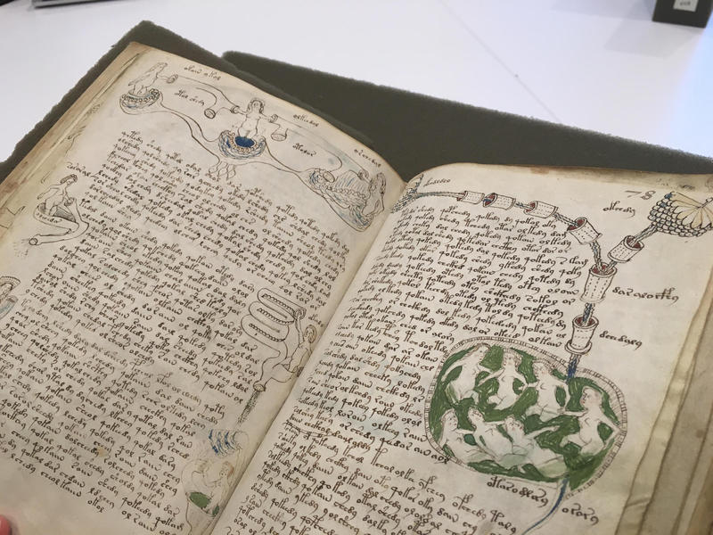 Pages from the Voynich Manuscript at Yale's Beinecke Library. No one knows what language or code it was written in, though many, including World War II codebreakers, tried to figure it out.