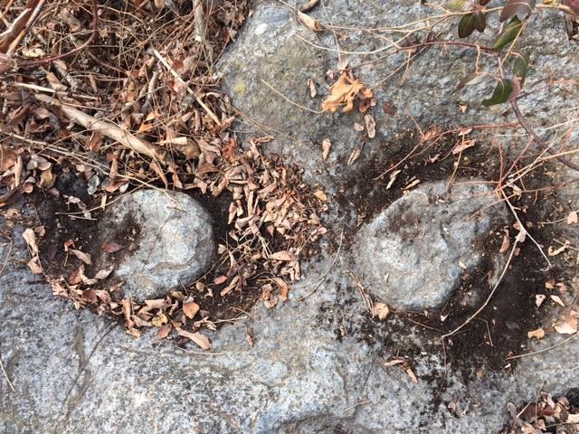 Pedestals left after bowl making at Ochee Spring