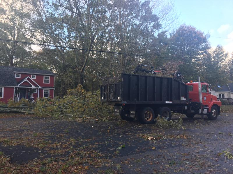 Branch clean up in Barrington after Sunday night's storm.