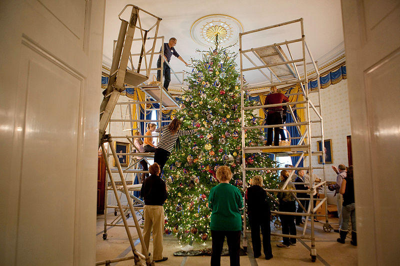 A team of volunteers decorates the official White House Christmas Tree in the Blue Room of the White House, Nov. 2009.