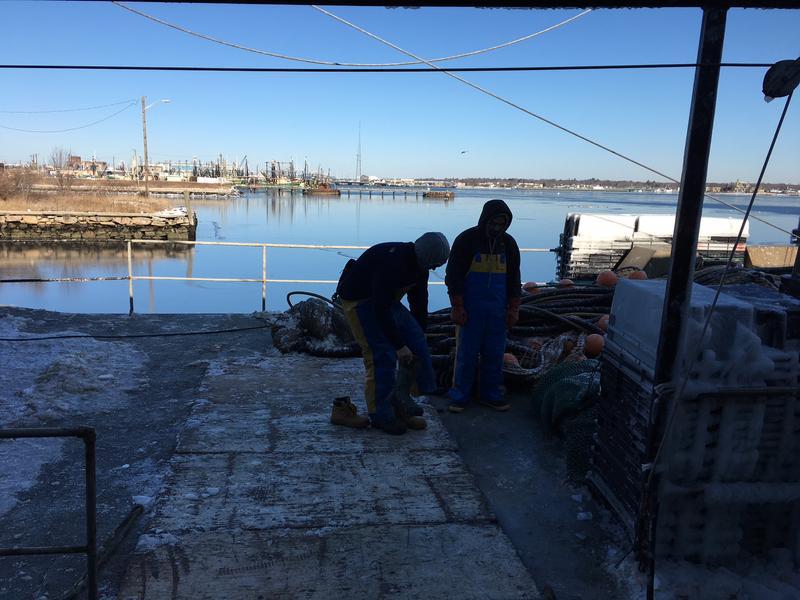Fishermen suit up at New Bedford docks