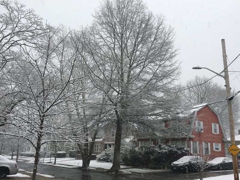 Snow in Providence's Elmhurst neighborhood Monday morning.