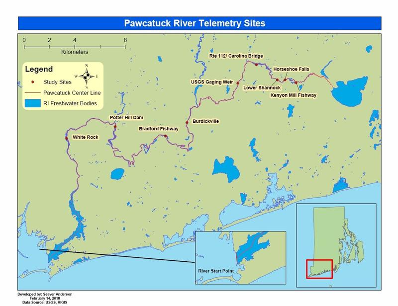 Map of dams and assessment sites along the Pawcatuck River.