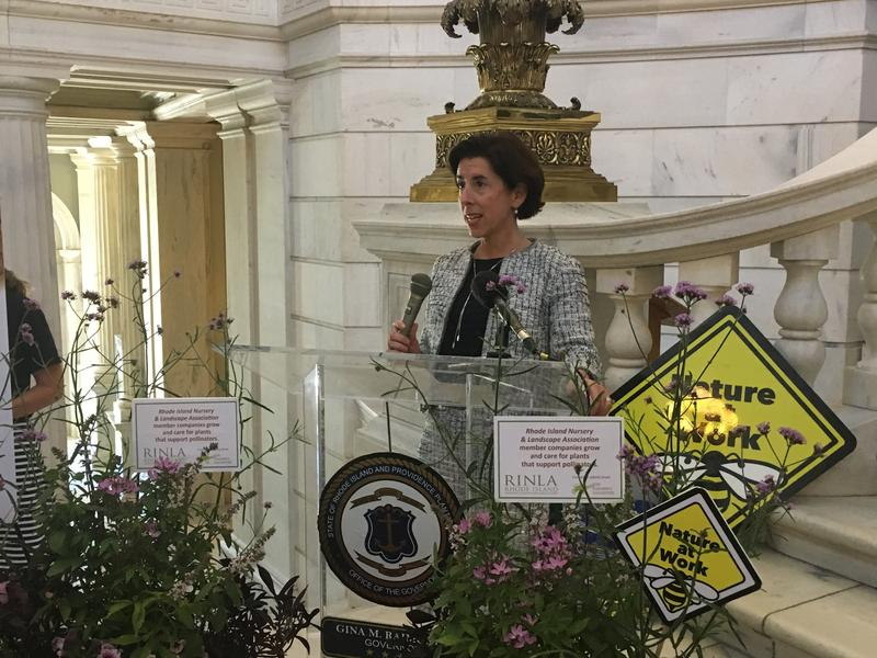 Governor Gina Raimondo speaks during a bee rally Tuesday at the Statehouse for National Pollinator Week.