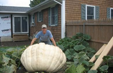 Bob Singleton of Portsmouth poses with his nearly 1100 lb. pumpkin.  He hopes to place in the top 10 at the Rhode Island Giant Pumpkin contest on October 9. Photo by Flo Jonic.