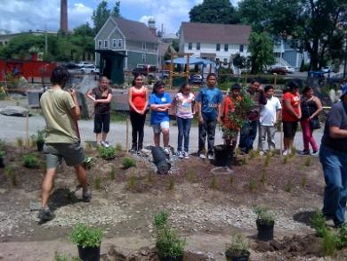 Students from William D'Abate Elementary School help with the garden.