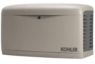 Kohler generator.  Simple, unassuming looks - but it can be a lifesaver!