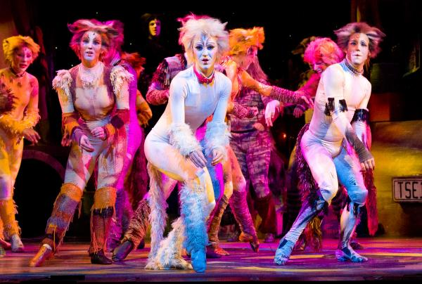 The cast of CATS at Theatre By The Sea through July 13.
