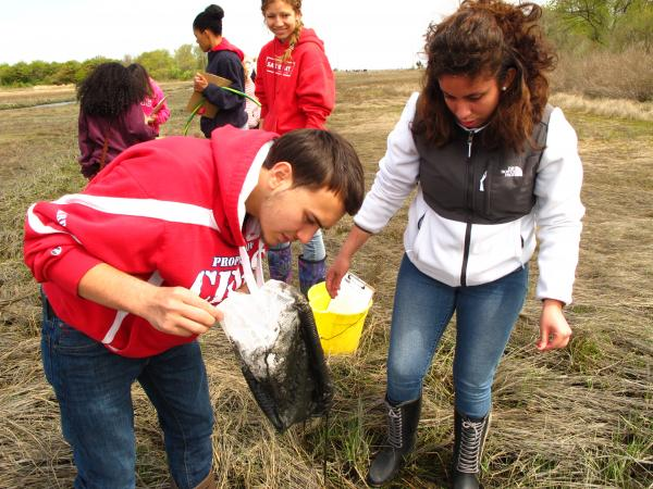 Elser Colindres, 18, and Agatha Vargas, 18, collect saltwater marsh organisms as part of the field studies portion of their advanced environmental science class. Save the Bay offers this program as part of a partnership with Central Falls High School.