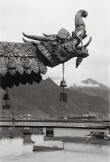 Andrea Baldeck, <em>Water Monster Gargoyle on Temple Roof</em>, Photograph, Tibet, 2005
