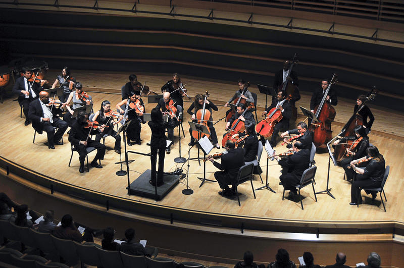 Black Pearl Chamber Orchestra in concert