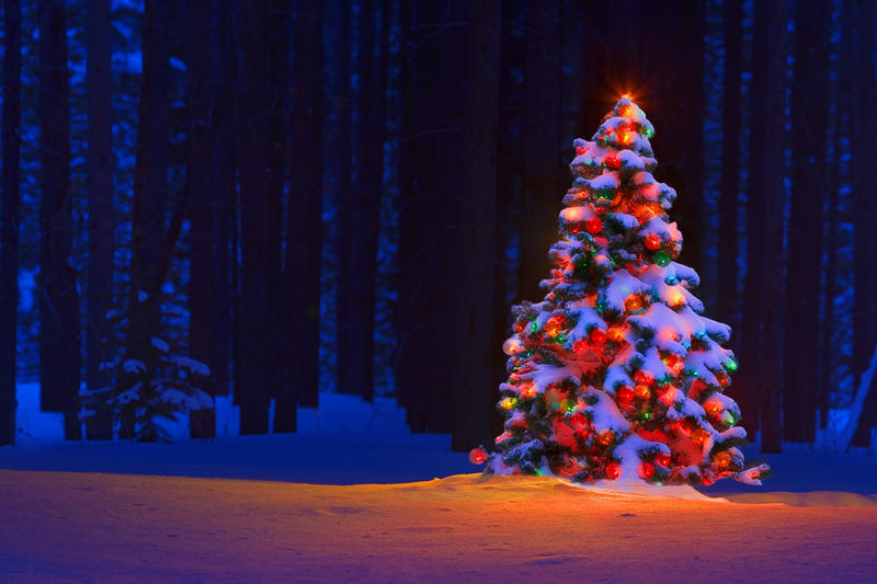 Silent Night was written in 1818 by Joseph Mohr and Franz X. Gruber