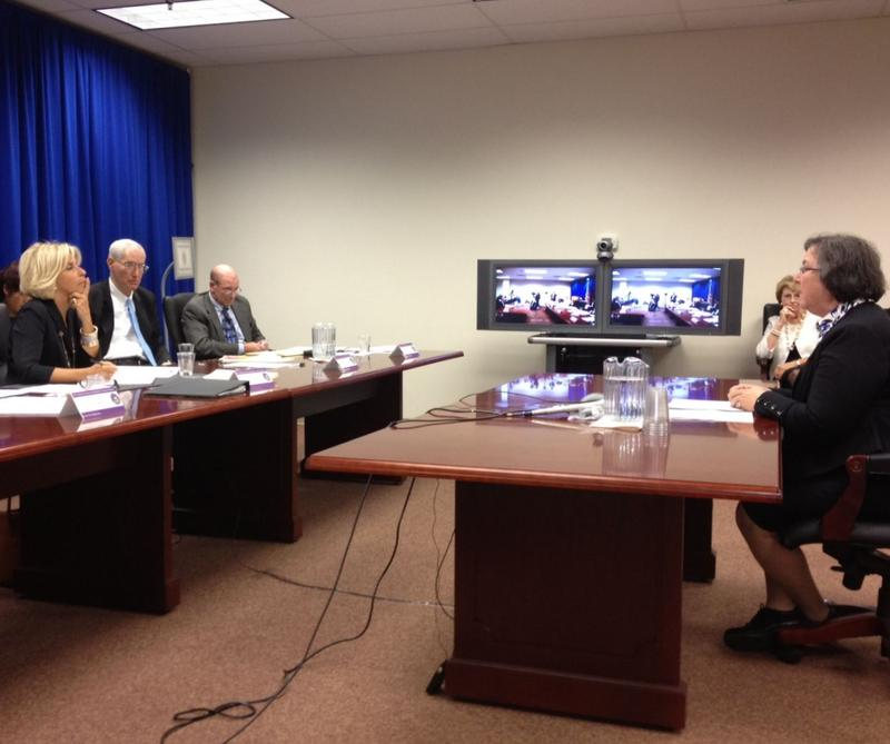 Sue Lerner of Common Cause testifies at JCOPE hearing as Chairwoman Janet DiFiore listens