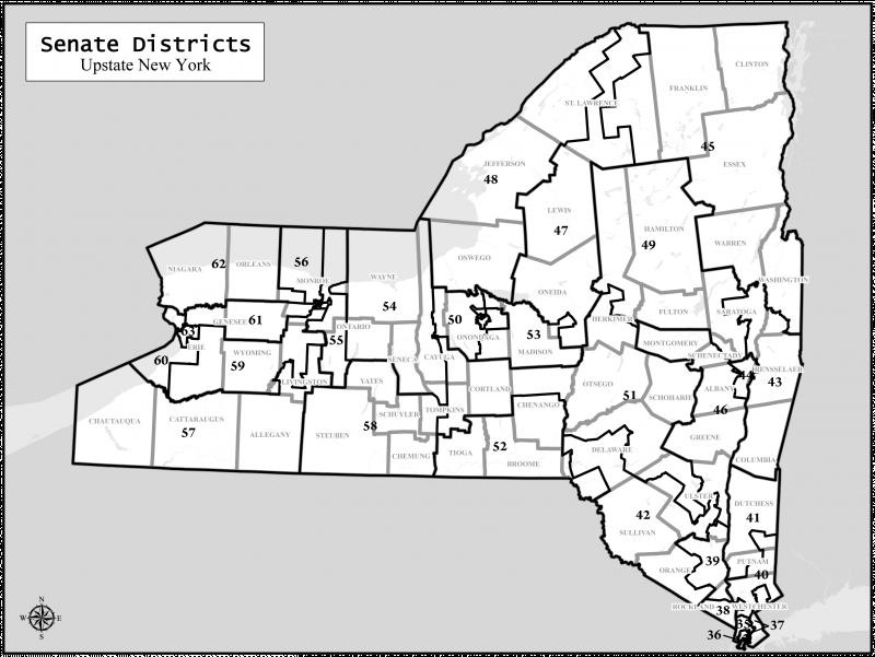 New York State Senate Map