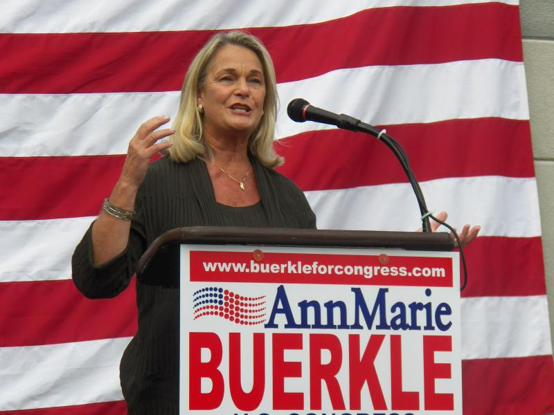 Republican Rep. Ann Marie Buerkle at a rally in September.