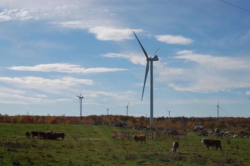 70 new turbines dot the horizon in Clinton, NY.