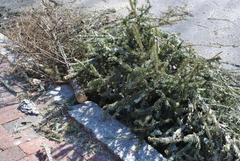 Onondaga County will be collecting Christmas trees to be turned into mulch.
