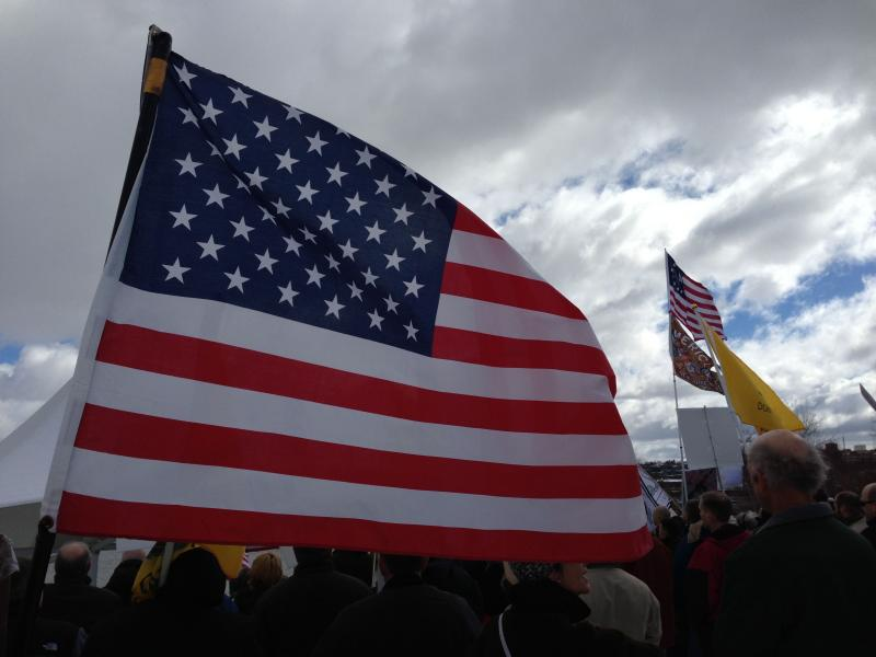 Lots of American flags were on display at Saturday's rally protesting the NY SAFE Act