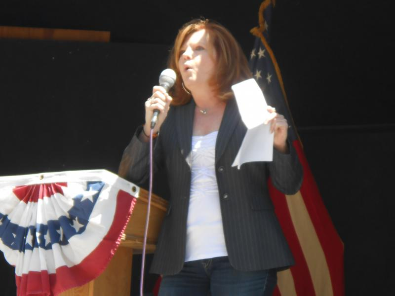Karen Bisso, a 2012 candidate for state Assembly from Plattsburgh, energized the crowd at a Lewis County rally with a rousing denunciation of New York's new gun control measures.