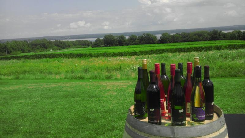 Small upstate wine producers may see a benefit from Gov. Andrew Cuomo's new legislation.