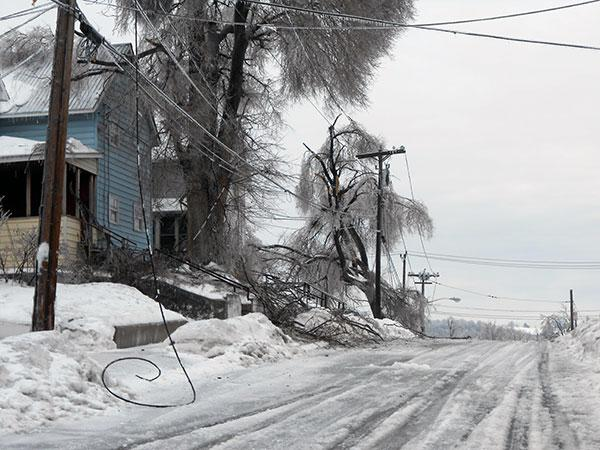 Power lines downed by icy tree limbs coiled on the frozen roadways all over Watertown Sunday.