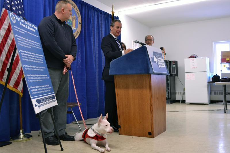 Attorney General Eric Schneirdman talking about animal cruelty at the CNYSPCA.