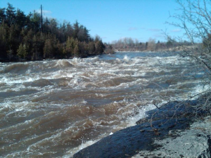 Black River flooding