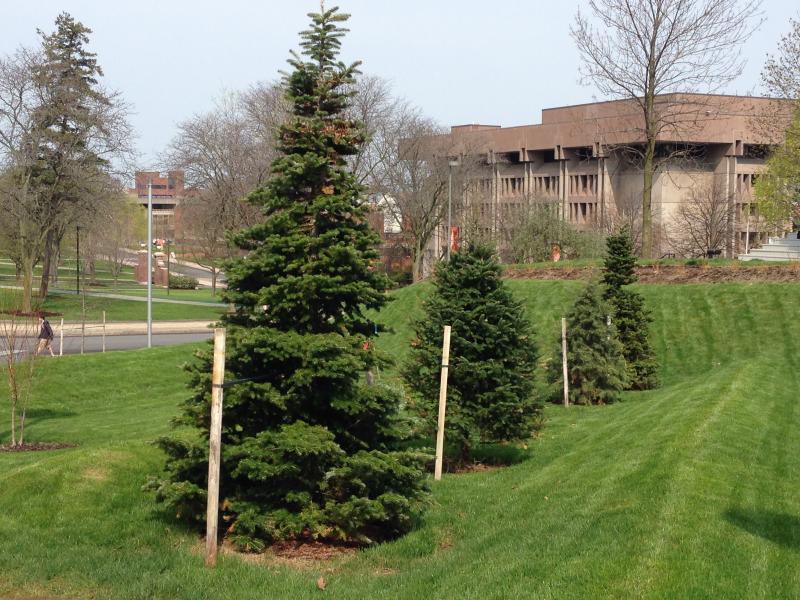 The new living lab at Syracuse University.